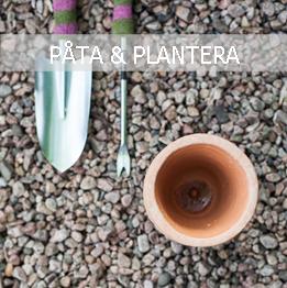 PÅTA & PLANTERA